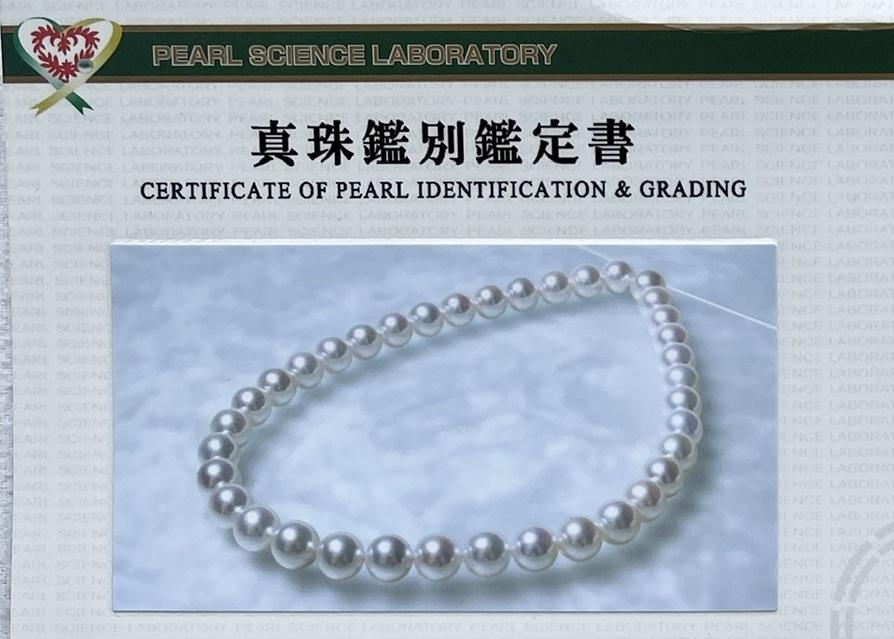 真珠科学研究所の評判は?【※様々な意見を総括します】